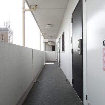 共用廊下もとってもキレイ!