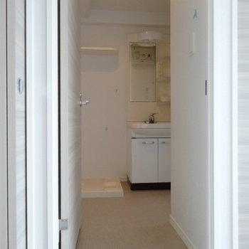 脱衣所も十分スペース。洗濯機置場上の棚には洗剤置こう!