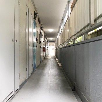 共用廊下は少しレトロだけど、綺麗です。