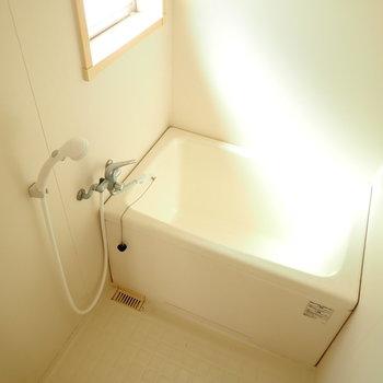 昼間にシャワーを浴びたくなる光の入り具合...