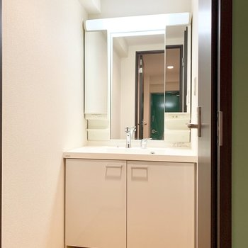 ちゃんと個室の洗面スペースがあるのは評価してほしい。