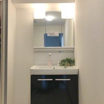 洗面台の隣にも収納が置けそう。※写真は3階同間取り・別部屋のものです。