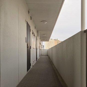 共用廊下もとても綺麗でした。
