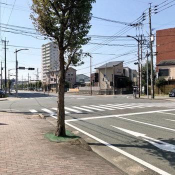 目の前の通りはそこまで大きくなく、程よい車通りです。
