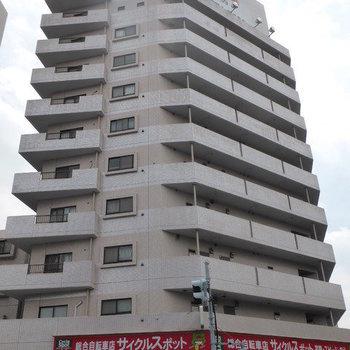 パールモア新井堂