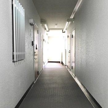 共用部】廊下は少し暗い印象。