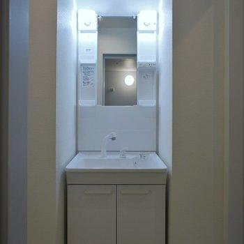 洗面所はまずまずの広さ※写真は同タイプの別室。