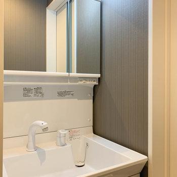 シャワータイプの洗面台。鏡裏も収納力があります。