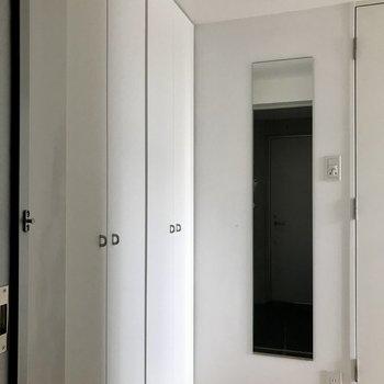 ですが、収納や鏡があり設備は充実しています