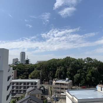 眺望はこちら。青い空と緑が素敵。