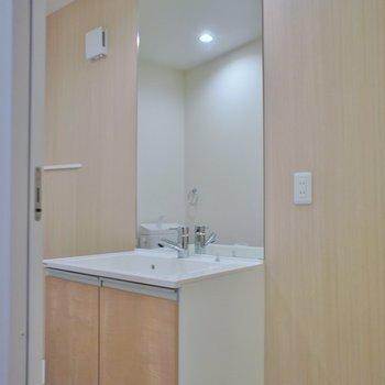 でもしっかり洗面台もあるよ※写真は同タイプの別室。