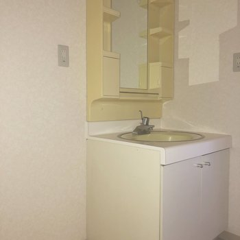 独立洗面台の横に洗濯機置場。