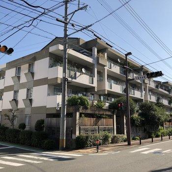 閑静な住宅街にあるちょっとベテランさんなマンション。