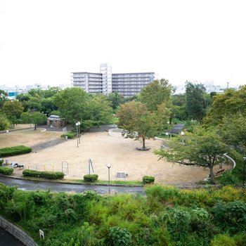 大きな千島公園もすぐお隣に。ランニングや、お散歩をしている方がいらっしゃいましたよ。