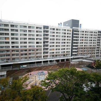 大阪市内でも最大規模の団地です。