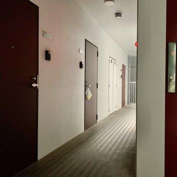 共用廊下はちょっぴり暗め。雨をしのげます。