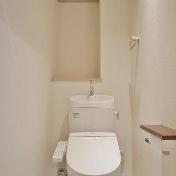 このトイレの感じタイプ※写真は同タイプの別室