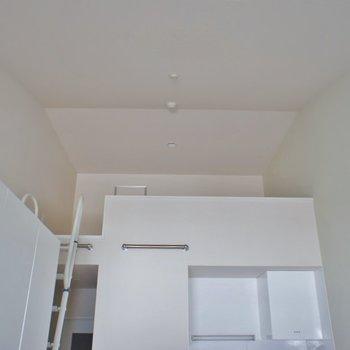 いざ、ロフトの上へ、、、※写真は同タイプの別室