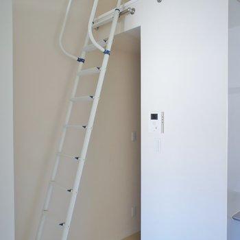 こちらの梯子を使います!※写真は同タイプの別室