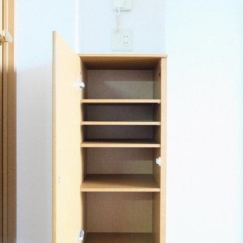 リビングの小さな棚は小物をしまっておけるかな。(※写真は4階の反転間取り別部屋のものです)
