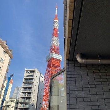 右手には東京タワーがしっかりみえますよ◎