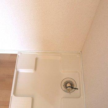 隣の洗濯機置き場