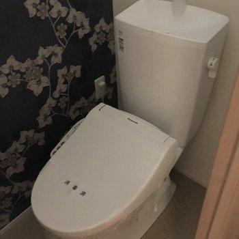 トイレのクロス可愛い~♡