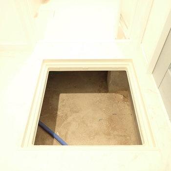 脱衣所に床下収納発見!