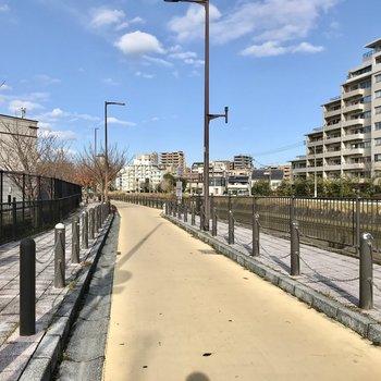 今日はなにを作ろうかなって考えて、近くの樋井川沿いをお散歩♩
