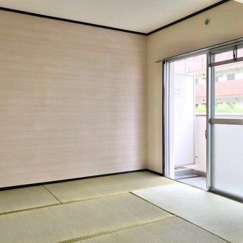和室の奥の壁も、淡い色合いで癒やされます。表替えされている畳が気持ちいいです。