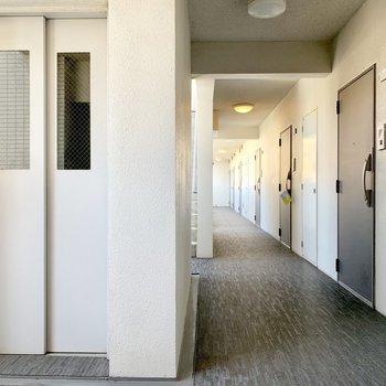 共用廊下、明るくてキレイ◎