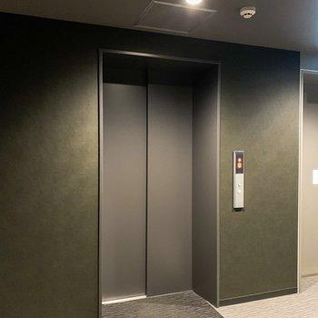 13階にはこちらのエレベーターで。