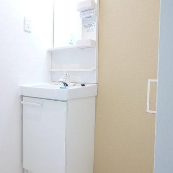 洗面台のすぐ隣が洗濯機置き場です。 お風呂前の洗面所にあります。