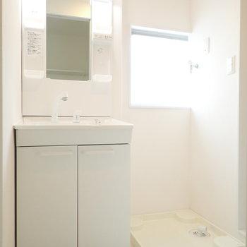 洗面台と洗濯機は脱衣所に。