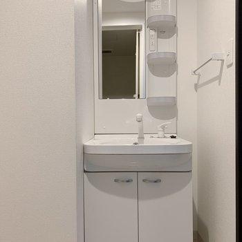 手前は独立洗面台◯収納しっかりできるタイプ。