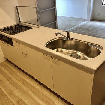 広々シンクで洗い物も捗りそう!