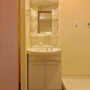 洗面台の足元には床下収納も ※写真は1階の反転間取りの別部屋のもの、クリーニング前のお部屋です。