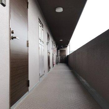 共用廊下も清掃されていて、とっても綺麗