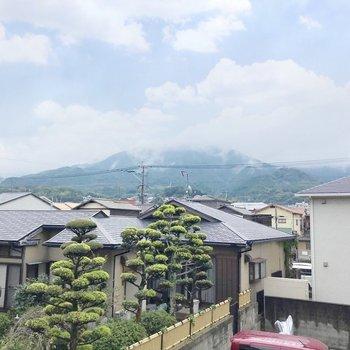 山が見えます。のどかだ…!