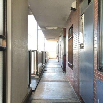 きれいな共用廊下。