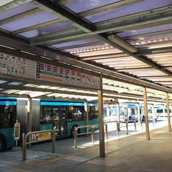 駅前からはバスがたくさん出ています。