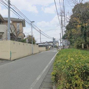 小道には新しめのお家や、緑が綺麗な公園も。