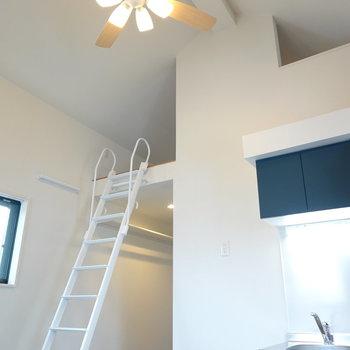 天井が高い…! 照明はシーリングファンライトで、空調にも配慮。