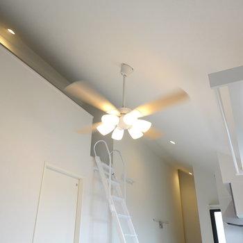 高い天井にシーリングファンライト。空調にも配慮されています。 左のドアから脱衣所へ。
