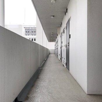 共用廊下もとても綺麗。