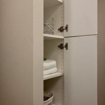 洗面台の反対側の壁にも収納があります。