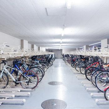 大きな駐輪場があるので、家族でサイクリングも楽しそうですね。