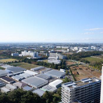 さすがの眺望です。※写真は29階の眺望です