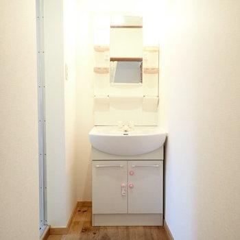 洗面台です。通路にバスタオル台を置いてもいいですね。