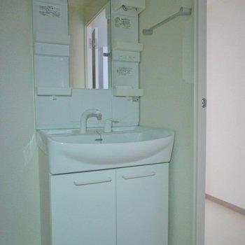 洗面所も問題のない広さ。